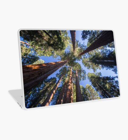 Surrounding Monster Trees - Nature Photography Laptop Skin