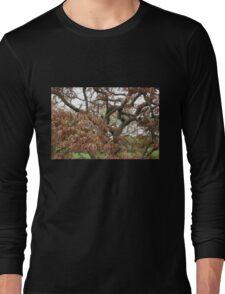 Tree Study 23 Long Sleeve T-Shirt