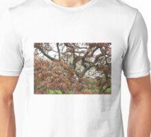 Tree Study 23 Unisex T-Shirt