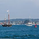 Poole Harbour Boats by Sue Robinson