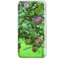 Apple Tree In The Rain iPhone Case/Skin