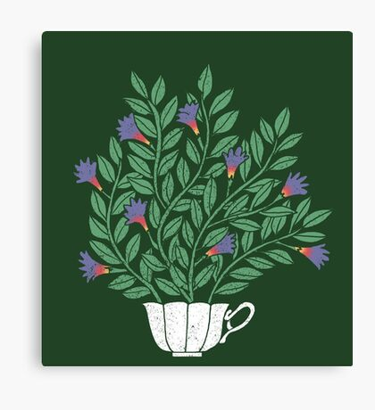 A Cup of Tea (Jasmine) Canvas Print