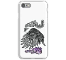 The Crow And The Crystals iPhone Case/Skin