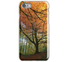 Autumn colours. iPhone Case/Skin
