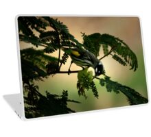 Birdy Laptop Skin