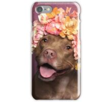 Flower Power, Topaz iPhone Case/Skin