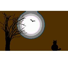 8-Bit The Moon and the Cat Photographic Print