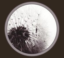 Dandelion Seed Stand T-Shirt