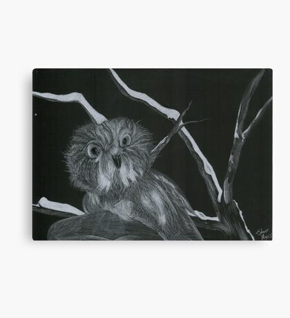 White Pencil Owl Canvas Print