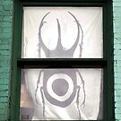 Beetle Curtain  by Ethna Gillespie