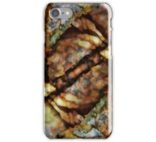 Nature Abstract iPhone Case/Skin