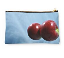 Is it a Plane Is it a Bird  No it Blue Sky Apple Reflections Studio Pouch