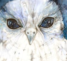 Zeus - The Owl with stars in his eyes... Sticker