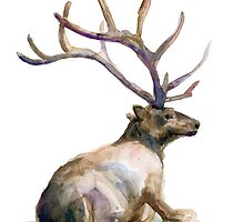 Deer with antler watercolor by Zendrawing