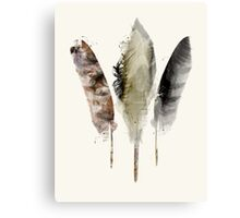nature feathers Canvas Print