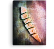 Fragmented melon Canvas Print