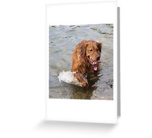Athena - Goofy pup Greeting Card