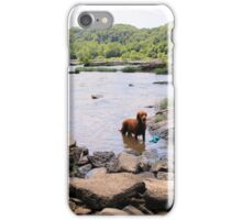 Willow - River View iPhone Case/Skin