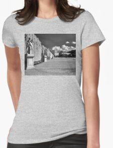 Great Parterre, Gardens of Schönbrunn, Vienna Womens Fitted T-Shirt
