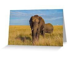 Masai Mara Elephant Greeting Card