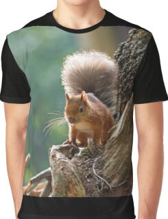Red Squirrel Backlit Graphic T-Shirt