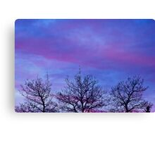 Tree Tops In The Sunset Canvas Print