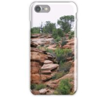 Canyon Roads Display iPhone Case/Skin