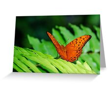 Orange Cruiser Greeting Card