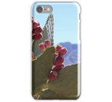 Cactus at Valley of Fire  iPhone Case/Skin