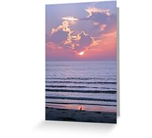 Sunset over the ocean watched by a bird on the beach Greeting Card