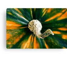Colorful Gourd - Fall themes Canvas Print