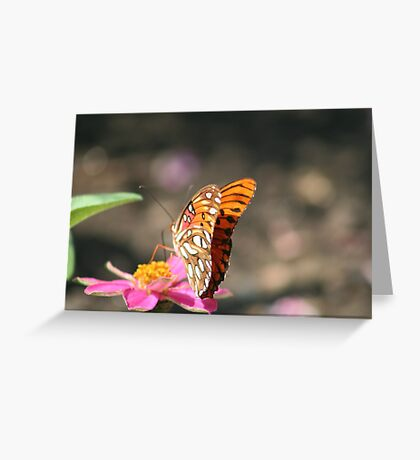 Monarch butterfly perched on pink flower Greeting Card