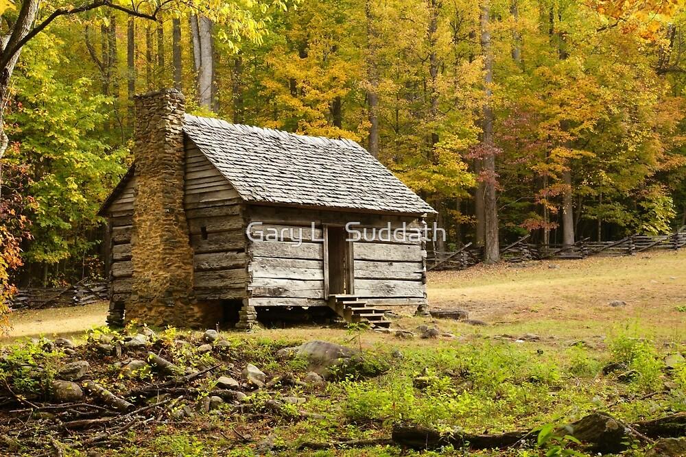 Alex Cole Cabin II by Gary L   Suddath