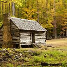 Alex Cole Cabin II by Gary L   Suddath