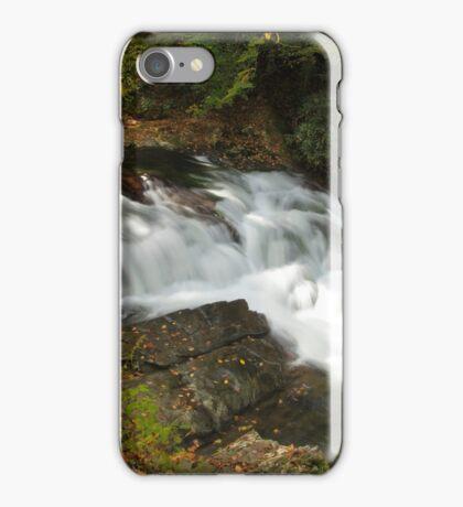 Laurel Creek Cascade iPhone Case/Skin