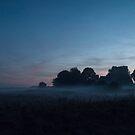 Hamerton Fields by stereocolours