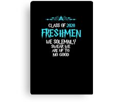 Freshmen - Class of 2020 - We Solemnly Swear We Are Up To No Good Canvas Print