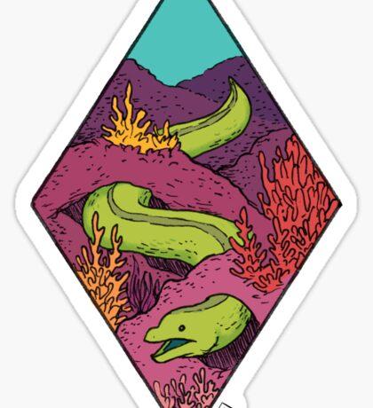 Moray Sticker