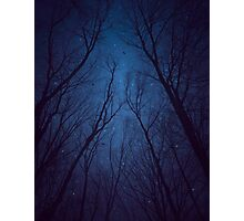 I Have Loved the Stars too Fondly (Night Trees Silhouette Abstract 2) Photographic Print