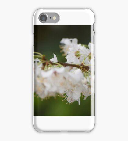 Lens Test iPhone Case/Skin