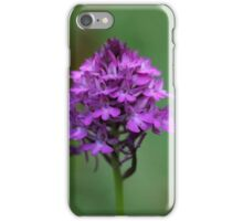 Pyramidal orchid iPhone Case/Skin