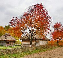 Old village by Maryna Gumenyuk