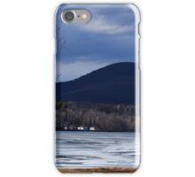 Birch Trees at Lake Onota  iPhone Case/Skin