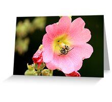 Worker Bee & Flower Greeting Card