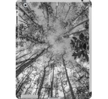 Soaring Cypress iPad Case/Skin