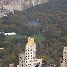 Aerial View, Central Park, New York City by lenspiro