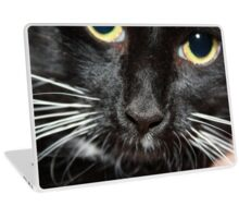 Kitty's Nose Laptop Skin