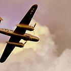 High Flight by Barry W  King