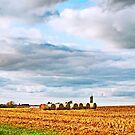 Fall Harvest by Nadya Johnson