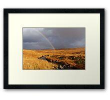 WE GOT A RAINBOW Framed Print